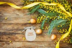 Påskferiebakgrund med filialer av mimosan Royaltyfria Foton
