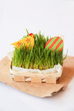 Påskferiegarnering med höna, ägget och gräs arkivfoto