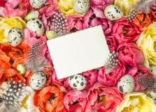 Påskgarnering med tulpanblommor och ägg Arkivfoto