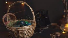 Påskkanin som tuggar hö nära en korg med kulöra ägg på en mörk bakgrund