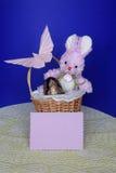 Påskkaninen - kortet, ägg i korg - lagerföra fotoet Arkivbild