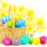 Påskkorg med ägg och blom- bakgrund Arkivbilder