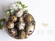 Påskkorg med easter ägg på vit bakgrund Royaltyfri Bild