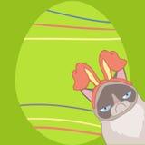 Påskkort med en ilsken katt i kaninöron vektor illustrationer