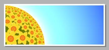 Påskliljan blommar bakgrund Royaltyfri Foto