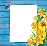 Påskliljor blommar på träbakgrunden Arkivfoto