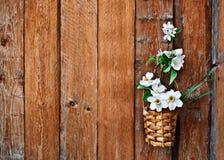 Påskliljor och blomstra äppleträdfilialen i en korg Arkivfoto