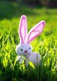 Påskplats med kanin med ägget på grönt saftigt gräs på våräng royaltyfri foto