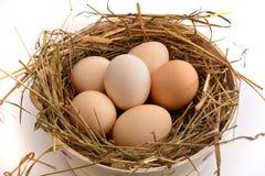 Påsktema: korg med ägg Arkivbilder