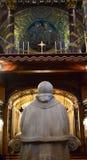 Påve som förbiser förändraen Royaltyfri Bild