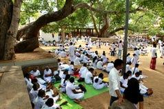 Pèlerins dans Anuradhapura, Sri Lanka Photo stock