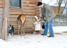 père de descendant peu de zoo de l'hiver Images libres de droits