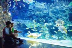 Père enthousiaste et fils observant l'espèce marine dans l'oceanarium Photos stock
