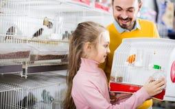 Père et fille appréciant leur achat d'oiseau jaune canari en pe Images libres de droits