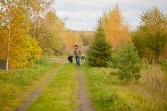 Père et fille marchant ainsi que le chien, jour d'automne Image stock