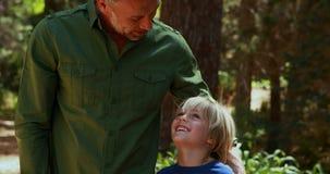 Père et fils agissant l'un sur l'autre les uns avec les autres en parc banque de vidéos
