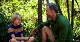 Père et fils agissant l'un sur l'autre les uns avec les autres en parc clips vidéos