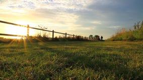 Père et fils faisant du vélo au coucher du soleil clips vidéos