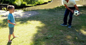 Père et fils jouant avec un football en parc banque de vidéos