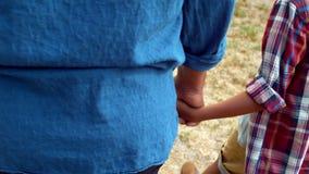 Père et fils tenant des mains tout en marchant dans le jardin clips vidéos