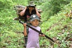 Père indien latin et fils rassemblant le bois de chauffage image stock