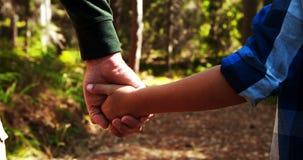 Père tenant la main de fils en parc clips vidéos