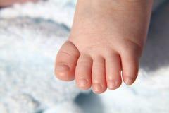 Pé asiático do bebê Foto de Stock Royalty Free