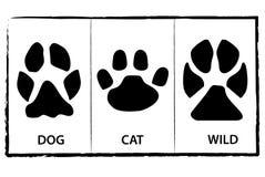 Pé de animais ilustração royalty free