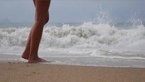 Pé desencapado da mulher que anda na praia do verão feche acima do pé da jovem mulher que anda ao longo da onda da água do mar e  filme