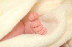 Pé do bebê Fotografia de Stock