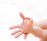 Pé do bebê da preensão do homem na palma imagem de stock