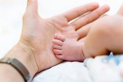 Pé do bebê da preensão do pai à disposicão Foto de Stock