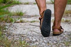 Pé nas sandálias Imagem de Stock