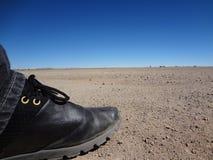 Pé no deserto Imagens de Stock Royalty Free