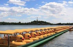 Pédalo de canard en parc de Beihai dans Pékin Images stock