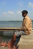 Pédicurie de station thermale de poissons en rivière Images stock
