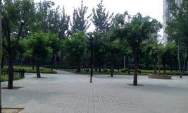 Pékin, Chine, brume, en été, les rues Images libres de droits