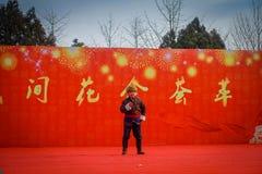 PÉKIN, CHINE - 29 JANVIER 2017 : Assistance du festival de célébration de nouvelle année dans le temple du parc de la terre, un b Photographie stock libre de droits