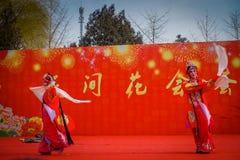 PÉKIN, CHINE - 29 JANVIER 2017 : Assistance du festival de célébration de nouvelle année dans le temple du parc de la terre, un b Photos stock