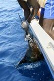 Pélerin africain de fixation d'homme sur le bateau de pêche de sport Photographie stock libre de droits
