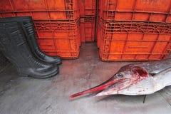 Pélerin sur le marché de poissons, Thaïlande. Photos libres de droits
