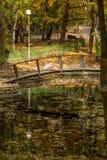 Pélican rose se reposant sur un pont en bois à travers le lac dans l'a Photographie stock