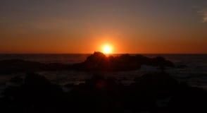 Pélicans au coucher du soleil photos libres de droits