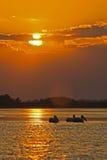 Pélicans pendant le matin Photographie stock libre de droits