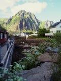 Péniche Norvège de pêche de port cercle polaire norway photo stock