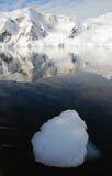Péninsule antarctique et montagnes neigeuses Images stock