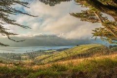 Péninsule d'Otago, île du sud, Nouvelle-Zélande Photographie stock