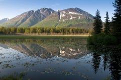 Péninsule de Kenai en Alaska Images stock
