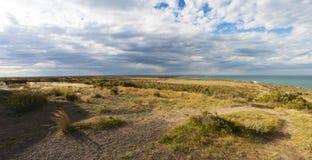 Péninsule de Valdes, Patagonia du nord, Argentine, Amérique du Sud Images stock