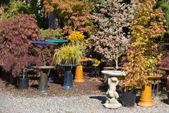 Pépinière extérieure générique de jardin photographie stock libre de droits
